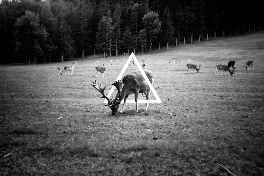 The Hipster Triangle Conspiracy
